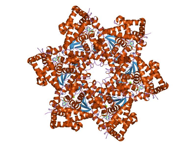 deteccion papiloma virus en hombres multe papiloame pe gât