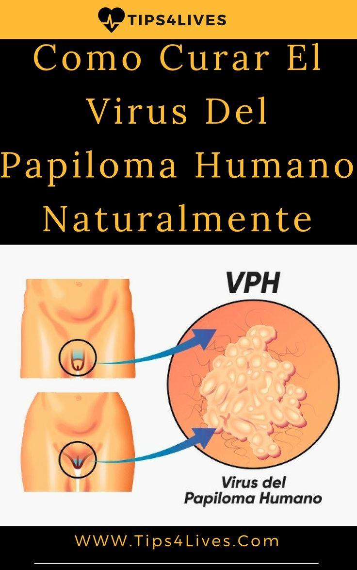 hpv vírus zellveranderung