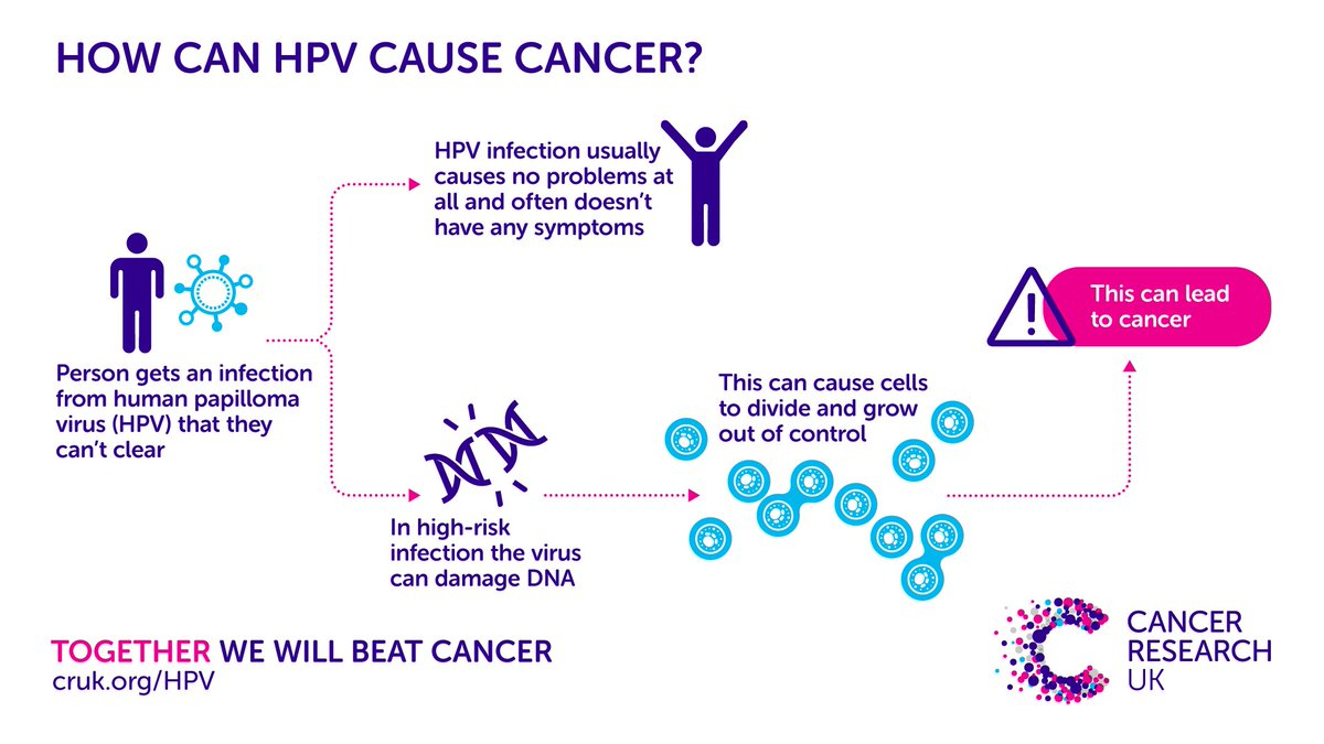 papillomavirus humain stade 3