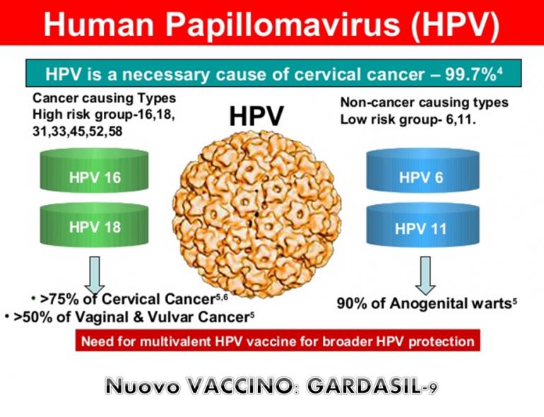 Vaccino hpv sterilita
