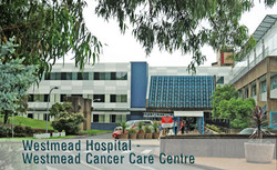 Familial cancer clinic westmead hospital. Cancer familial experiences - fotobiennale.ro