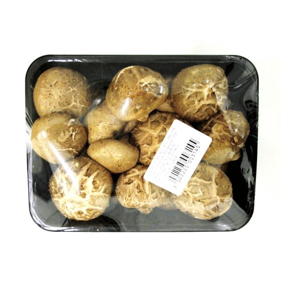 ciuperci shiitake