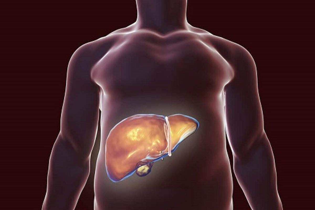 Sistemul urinar purifică organismul