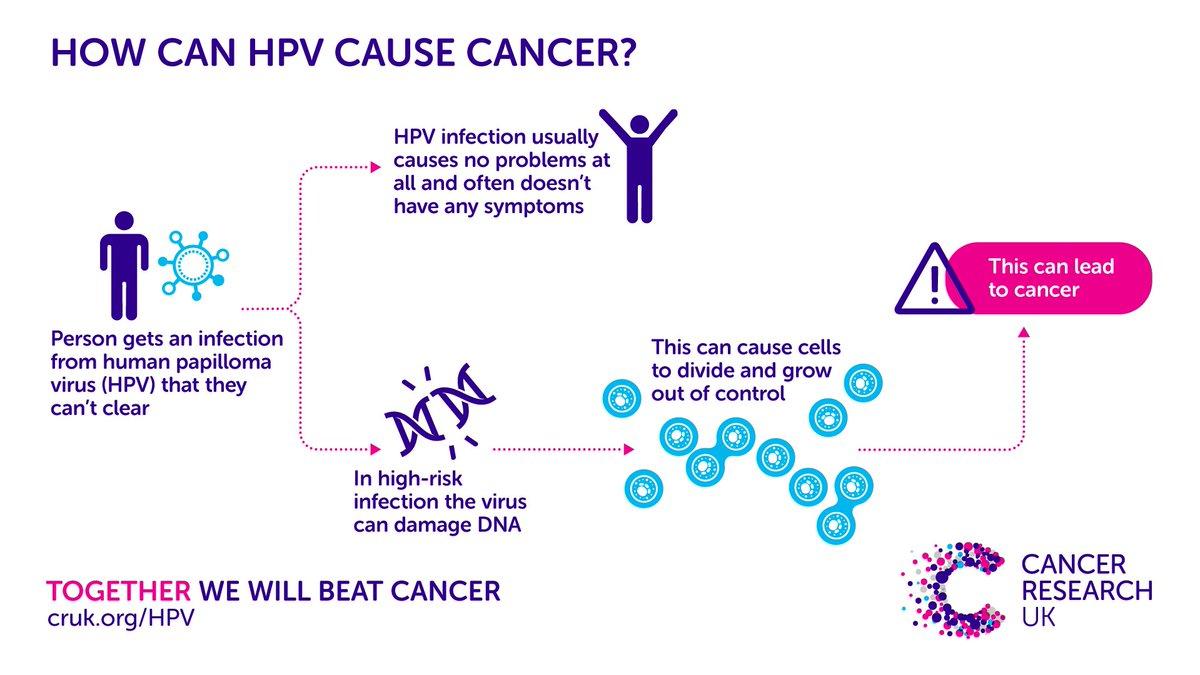 Hpv cure in males Dezvoltare de tip bandă largă