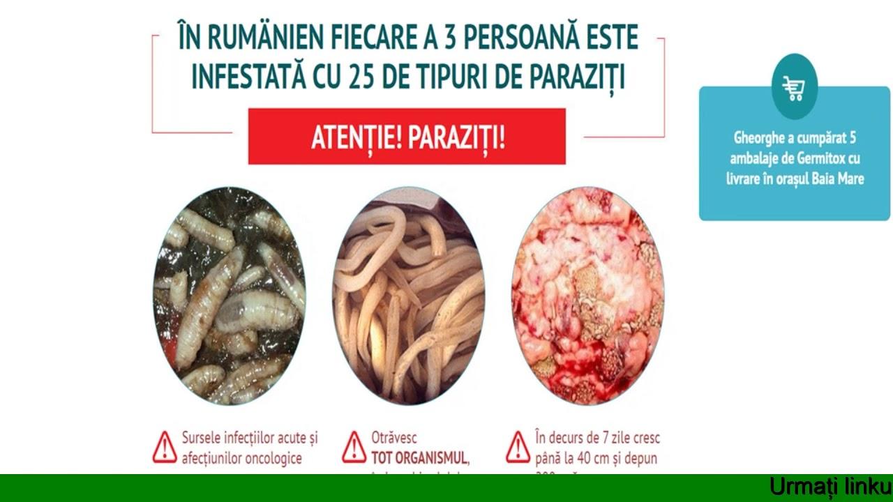 Cu atât mai bine să tratezi paraziții - Infecția parazitară cu oxiuri