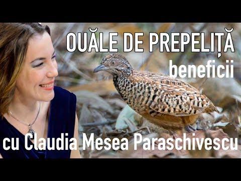 Prezența ouălor de helmint, Analiza ouălor de helmint - Paraziti giardia lamblia shqip