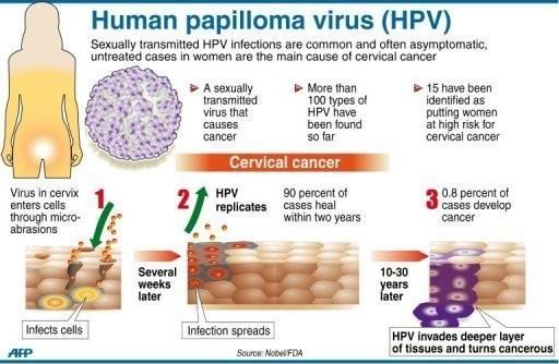 hpv cause bladder infection