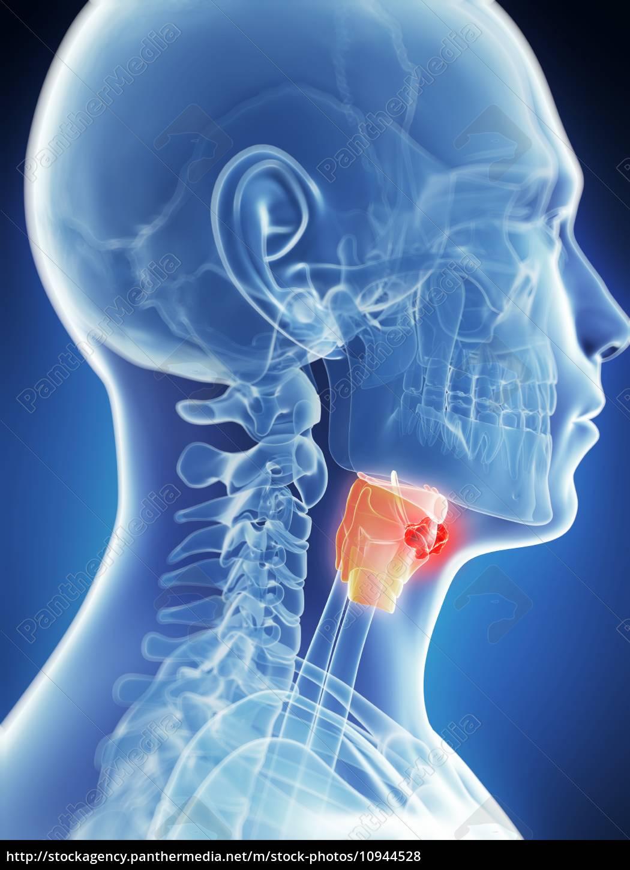 Adenomul de prostata - cauze, simptome, tratament