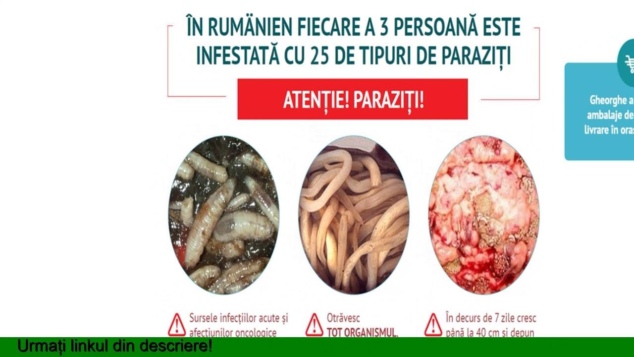 dieta anti vierme
