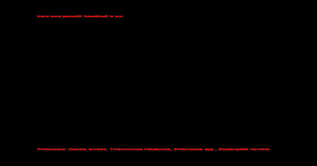 Preparatele de giardia și nematode diferențe de condilom sau papilom