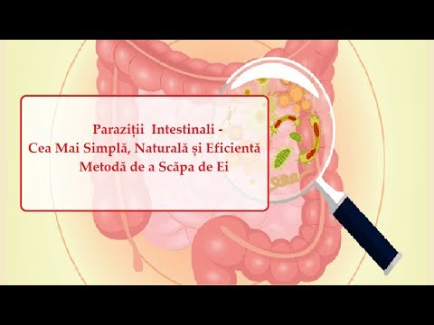 curățarea intestinelor de toxine și paraziți