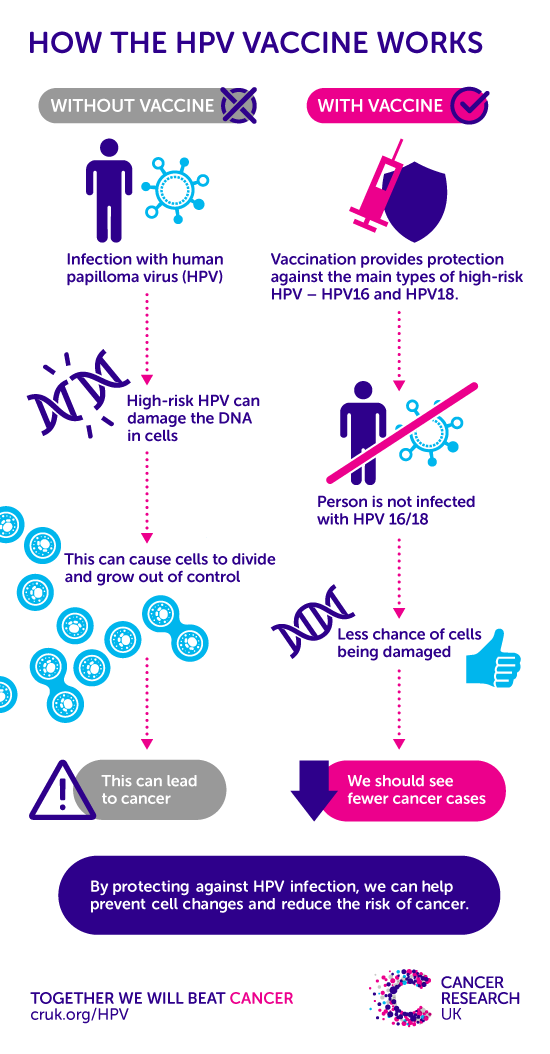 can hpv cause womb cancer