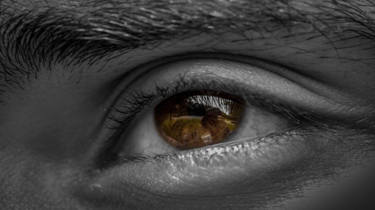 parazit în îngrijirea ochilor)