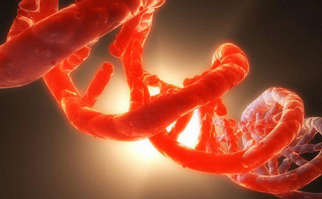 ce sunt toxinele din organism peritoneal cancer genetic
