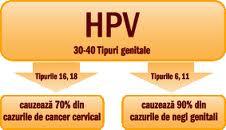 ovarian cancer quotes hpv virus en wratten