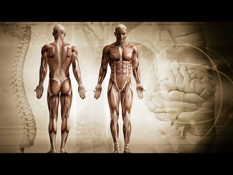 decontaminarea este viermi cancer colorectal constipation