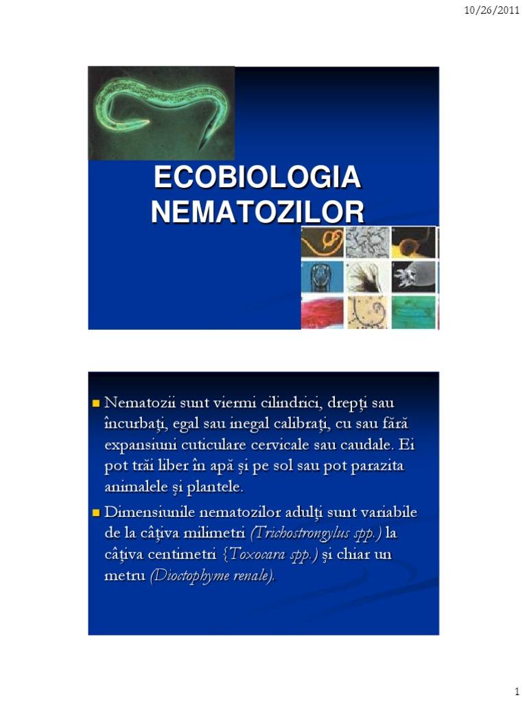 medicamente pentru viermi nou născuți negi sau iritații