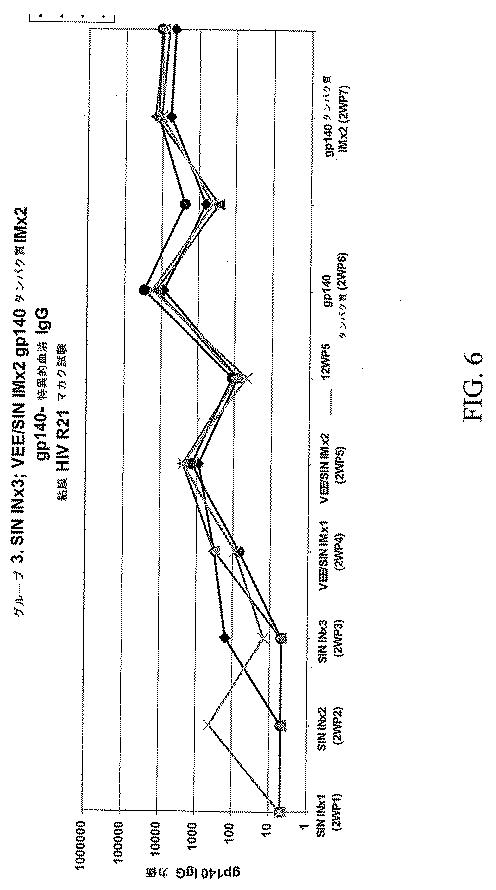 helminthosporium tegument