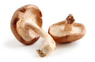 Hpv cure mushroom Mult mai mult decât documente.