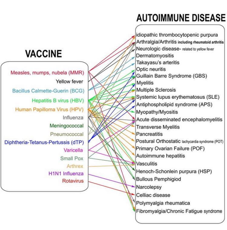 hpv virus hoito