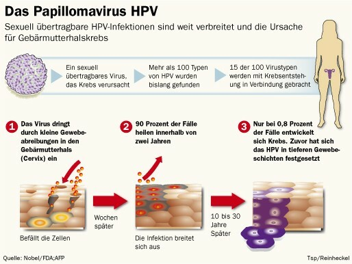 hpv krebs definition)