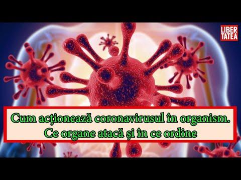 medicina umană parazitară