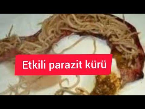 schema de îndepărtare a paraziților din organism)