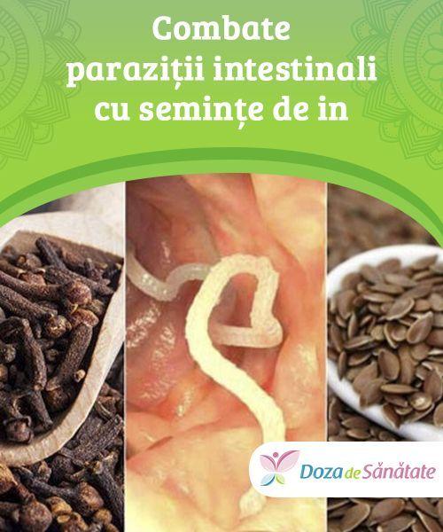 detoxifiere naturala a organismului
