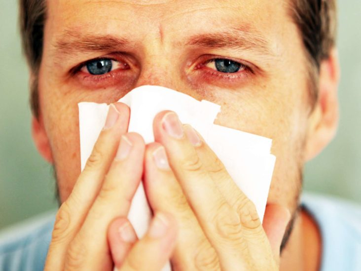infecții helmintice cronice bacterii heterotrofe