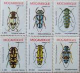 pret 1980 paraziti pregătire bună pentru viermi